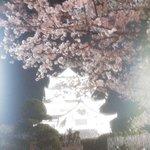 2015-04-03-20-38-30_photo.jpg